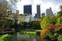 building and central park - stock photo