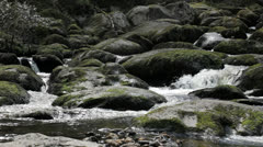 Stock Video Footage of Rock Boulder Filled Wild Streaming River - 25FPS PAL