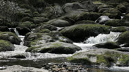 Stock Video Footage of Boulder Filled River