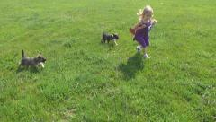 Child Walking, Running and Playing with Dogs, Children Love Puppies, Pets - stock footage