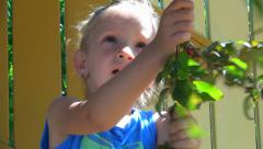 Child Picking and Eating Fruits from Tree, Little Girl at Countryside, Children Stock Footage