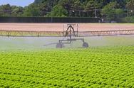 Water irrigation sprinkler Stock Photos