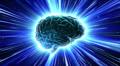 Brain 2 A1Dm3 HD HD Footage