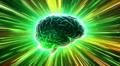 Brain 2 A1Dm4 HD Footage