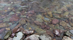 Water Flowing over Pebbles and Stones on Bed of Shallow River Stock Footage