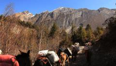 Transportation Goods Mules Himalayas Mountains Stock Footage