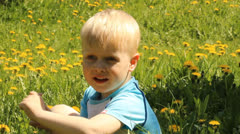 Fair-haired boy in a clearing among the flowers and dandelions - stock footage