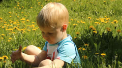 Fair-haired boy in a clearing among the flowers and dandelions Stock Footage