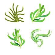 Collection of Branch trees silhouettes Stock Illustration