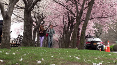 Walk along the promenade Roosevelt Island with cherry blossoms, NYC Stock Footage
