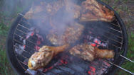 Stock Video Footage of Grill, Frying Fresh Meat on Grill, Chicken Barbecue, Healthy Food