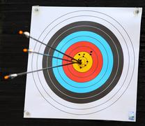 archery target with arrow in the bulls-eye - stock photo