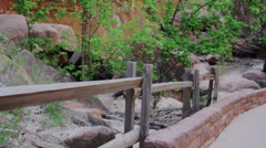 Spring in zion national park Stock Footage
