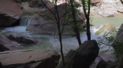 The virgin river at zion national park Stock Footage