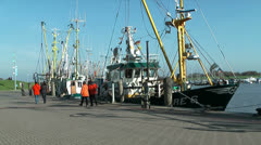 Shrimp boats in harbour Stock Footage
