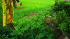 Radiation check yard garden Stock Footage