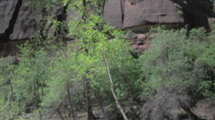 Tall cliffs at zion national park utah Stock Footage