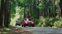 Car Passes Large Truck In Forest Stock Footage