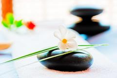 Still life with a black stone and a flower in the style of zen-like Stock Photos