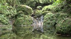 Creek - stock footage