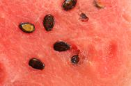 Stock Photo of Watermelon Macro