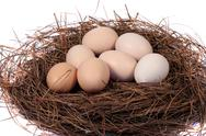 Stock Photo of Fresh Eggs