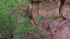 The emerald pools at zion national park Stock Footage