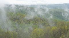 Misty Valley Stock Footage