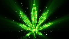 Cannabis leaf shape last 10s loop Stock Footage