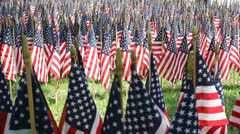 One Thousand Flags 5 Stock Footage