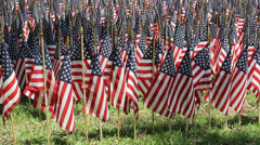OneThousand Flags 6 Stock Footage
