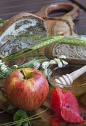 Tasty fresh organic meal - stock photo