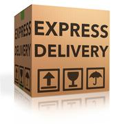 express delivery - stock illustration