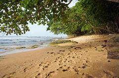 Tropical beach in central america Stock Photos