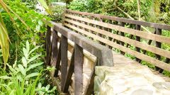 1930's old wooden / steel pedestrian forest bridge in El Yunque forest 2 Stock Footage