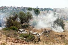 west bank settlements and fire in a palestinian field - stock photo
