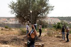 palestinian protester shooting rock at protest - stock photo