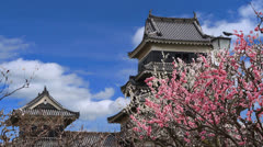 Stock Video Footage of Japanese castle.
