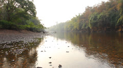 River in the morning Stock Footage