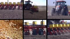Sowing Corn, Soybean, Sunflower Seed Stock Footage