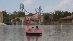 Pink Swan Paddle Boats on Lake with Rollercoaster in Background Stock Footage