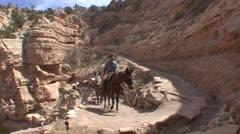 P02800 Fisheye of Mule Train at Grand Canyon Stock Footage