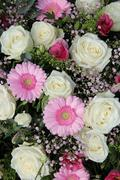 pink gerberas and white roses in bridal arrangement - stock photo