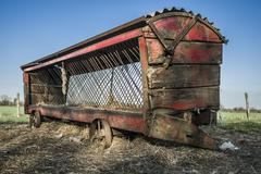cattle feeder - stock photo