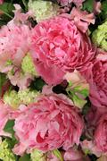 peonies in a bridal arrangement - stock photo