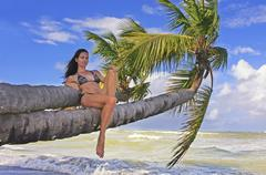 Young woman in bikini sitting on palm trees Stock Photos