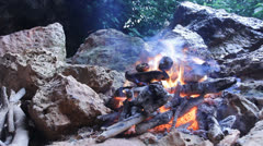 Camping Fireplace Fire flames burning outdoors campfire blaze campsite bbq Stock Footage