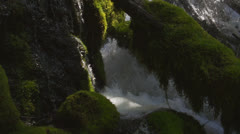 Water crashes and streams down around logs and rocks Stock Footage