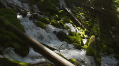 Slow motion waterfall surging between mossy rocks and logs Stock Footage