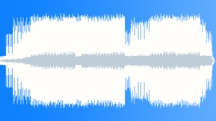 Stock Music of Seagulls